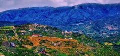 I Have A Dream (Christina's World!) Tags: landscape vegetation view vividcolors green blue hills mountains valley scenic panorama houses village colorful colors california sandiego sandiegocounty east casino high low martinlutherkingjr hdr