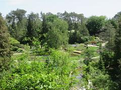 Rock Garden 7 (D. S. Hałas) Tags: halas hałas canada ontario wentworthcounty hamilton royalbotanicalgardens botanicalgarden rockgarden