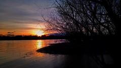 COLD. BUT GOLD (novaexpress93) Tags: novaexpress93 river water backlight sun sunset sundown dusk twilight trees silhouette winter