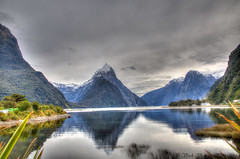 Milford Sound Reflection (myshutterworld) Tags: newzealand south island landscape mountains peaks serene picturesque gorgeous southland milfordsound hdr spectacular beautiful mind blowing amazing middle earth heavenonearth lake fiordlandnationalpark cloudy dark blue green water nature sky grass trees rocks fiord reflection snowcapped mitre peak lion greatphotographers