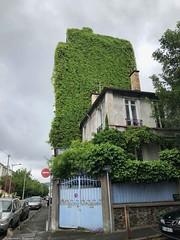 immeuble-vegetal© (alexandrarougeron) Tags: photo alexandra rougeron urbain ville paris