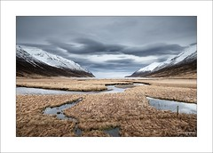 The World Below XIV (Frank Hoogeboom) Tags: roadside onderweg iceland ijsland lake fjord hedinsfjördur north northern scandinavia grass reeds meadow landscape color water sea snow bay sky mountain range clouds dramatic scenic fineart fence streams curves curvy vista