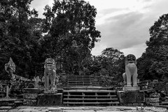180727 Elephant Terrace (2018 Trip) (clamato39) Tags: elephantterrace angkor angkorthom cambodge cambodia asia asie temple religieux religion old ancient patrimoine landmark voyage trip forest jungle ciel sky clouds nuages blackandwhite noiretblanc bw monochrome