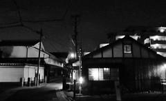 Hirakatakoen at night 0648 (Tangled Bank) Tags: hirakata city japan japanese asia asian town hirakatakoen night 0650
