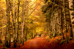 IRATI 25 Art Oleo (juan luis olaeta) Tags: paisajes landscape nature forest bosque basoa hayedo photoshop lightroom fujifilm art oleo autumn otoño udazkena irati