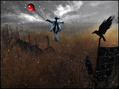 Migrating to the south for winter (bdira3) Tags: surreal field snowing fence raven scarecrow balloon flying atmospheric gloomy november