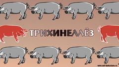 Что такое трихинеллез? (netbolezniamru) Tags: трихинелла трихинеллез паразиты гельминты гельминтоз глисты трихиноз шашлык мясо здоровье медицина netbolezniamru