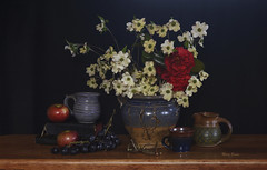 Still Life With Dogwood and Fruit (mevans4272) Tags: flowers dogwood fruit pottery books life still