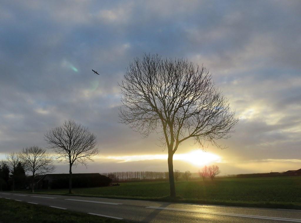 Regen En Zonneschijn : The world s newest photos of regen and zonneschijn flickr hive mind