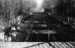 Bahndamm (Thomas Zampich) Tags: bahn schienen sw bw strasenbahn kvb köln analog