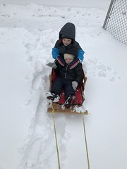 """Paul and Dani in Their Sled • <a style=""""font-size:0.8em;"""" href=""""http://www.flickr.com/photos/109120354@N07/46207371424/"""" target=""""_blank"""">View on Flickr</a>"""