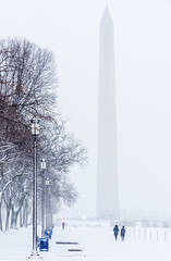 Winter Mall (Tim Brown's Pictures) Tags: washingtondc nationalmall uscapitol smithsonianmuseums smithsoniancastle winter snow snowing snowstorm snowflakes february20 2019 people pedestrians joggers running climate washington dc unitedstates