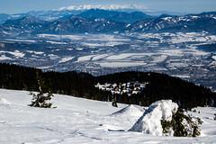 0132_DSC_2567 (marcellszmandray) Tags: kirándulás tél lucskaifátra szlovákia hó fátra