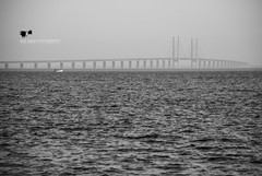 The Bridge (Suri Singh) Tags: bridge bron bruecke scandinavia denmark blackwhite blackwhitephotography nikon seascape