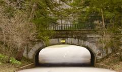 Spring Grove Cemetery (mikeginn12000) Tags: bridge canon cincinnati spring grove tunnel cemetery trees grass