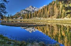 Lago con isola (giannipiras555) Tags: lago dolomiti montagna riflessi colori landscape panorama paesaggio autunno alberi