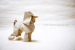 Poodle designed by Yoo Tea Yong (Sunny^o^) Tags: origamidog sunny'sorigami origami yootaeyong poodle