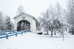 Covered bridge in snow, Willamette Valley, Oregon (icetsarina) Tags: snow winter oregon covered bridge fence trees