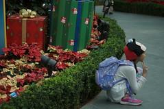 DSC00663- Kid Fashion (oliveplum) Tags: poinsettiawishes2018 gardensbythebay sony singapore leica60f28macro christmas decoration people fashion flowerdome