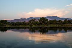 Lake - Palisade, Colorado (BeerAndLoathing) Tags: pallisadetrip pallisade usa palisade sunset goldenhour reflection canon trees summer roadtrip 77d august trip ripples water 2018 colorado lake canoneos77d sigma18300mmf3563