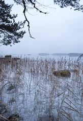 River (Eklandet) Tags: cold countries fineartphotography frost frozen ice landscape landscapephotography nature naturelover naturephotography nordic samsung scandinavia sky snow sverige sweden winter winterscape