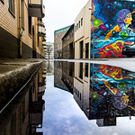 Mural in puddle reflection (explore 2019-01-09) thumbnail