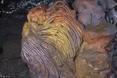 Crinière de lion dans les entrailles de La Fournaise (philippeguillot21) Tags: lafournaise volcan réunion entrailles crinière lion indianocean océanindien afrique africa france outremer pixelistes canon