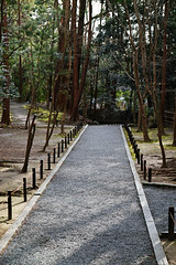 SDQ_1261 (koyaman3422) Tags: 京都 kyoto sigma sdquattro 1770mm 法然院