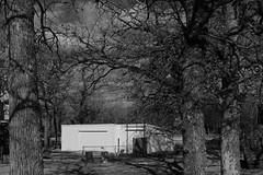 Fresh Paint (Gene Ellison) Tags: building barn metal white paint farm sky clouds rural blackwhitephotos bw acros fujifilm sooc