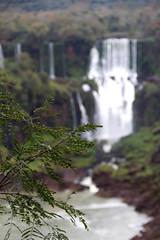 Foz do Iguaçu waterfall (claudia.zucca) Tags: canon labukuning fozdoiguacu iguacu waterfalls water nature argentina brasil paraguay border