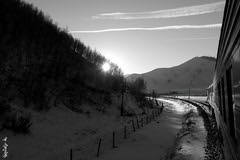 to the sun... (N.Batkhurel) Tags: season winter sky snow sun trees forest railway railroad locomotive landscape trains trainspotting transport railfan olympus ngc bw blackwhite sunset