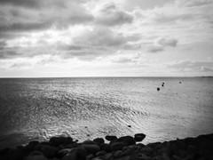 Poetry of waves (rorofot) Tags: analog deutschland filmnegative holga kodak400trix nordsee scans vollerwiek watt