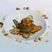 Gourmet-Speise Pasteten mit Gurke und Karotte angerichtet in Form einer Blume auf weißem Teller