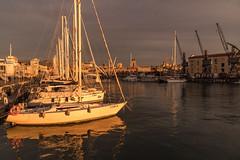 Riflessi di luce (M-Gianca) Tags: porto genova barche boat navi acqua water sony italy italia mare luci light