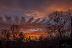 Driveway Sunset (benemme) Tags: sunset outside driveway home evening nightfall sundown sky clouds nikond7200