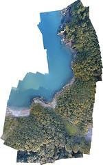 Ansteys Cove (Jules Hancock) Tags: dji phantom4 drone sea coast uk trees beach