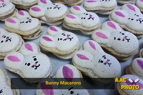 """Bunny Macarons • <a style=""""font-size:0.8em;"""" href=""""http://www.flickr.com/photos/159796538@N03/46876581534/"""" target=""""_blank"""">View on Flickr</a>"""