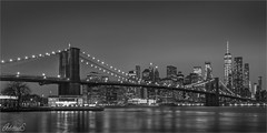 Manhattan from Pebble Beach, New York (AdelheidS Photography) Tags: adelheidsphotography adelheidsmitt adelheidspictures america architecture brooklynbridge manhattan newyork unitedstates usa us blackwhite zwartwit monochrome skyline skyscraper evening cityscape citylights city cityview eastriver freedomtower worldtradecenter bridge riverbank river lights canoneos6dmkii canonf4l224105