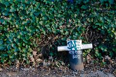 "090118_Canal_231 (hoffman) Tags: bollard post fixing iron column ivy roadside uk gbr davidhoffman davidhoffmanphotolibrary socialissues reportage stockphotos""stock photostock photography"" stockphotographs""documentarywwwhoffmanphotoscom copyright"