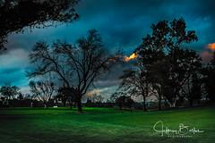 After the Rains-3927 (Jeffrey Balfus (thx for 3.3 Million views)) Tags: sonyalpha saratoga california unitedstates us