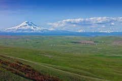 Mt Hood From Columbia Hills 4775 B (jim.choate59) Tags: jchoate on1pics mounthood mountain scenic columbiahillsstatepark klickitatcounty oregon washington pacificnorthwest columbiagorge spring clouds field grass