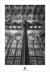 Vidrieras (alcachofa1960) Tags: barcelona catalunya tarde sagradafamilia gotico modernismo vidrieras antonigaudí luz