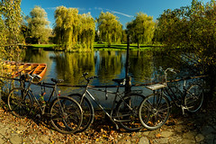 At River Cam (Walter Quirtmair) Tags: ifttt 500px river cam cambridge bicycle bike fence boat punt tree fall autumn light green quirtmair england park boardwalk promenade pond