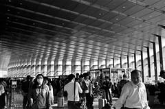 (Janeprogram) Tags: пленка 35mm blackandwhite bnwphotography filmphotography fujifilm neopanacros100 acros100 fujiacros100