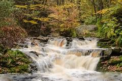 La Hoegne (vanregemoorter) Tags: bois cascade forêt eau belgium