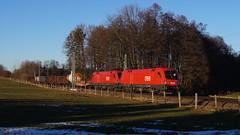 1116 196 + 1116 076 / ÖBB - Vogl (lukasrothmann) Tags: bayern oberbayern heimat vogl train zug lok lokomotive öbb mischer güterzug taurus trains sony alpha 1116