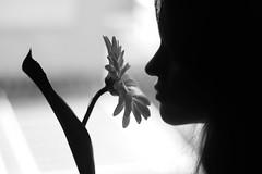 8 DE MARZO (@merchelas) Tags: 8m soymujer diadelamujer bnw monocrome woman flor black blackwhite blackandwhite blancoynegro bn portrait retrato