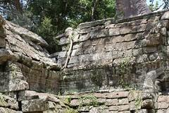 Angkor_Ta Prohm_2014_14
