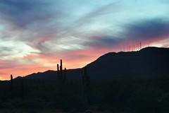 South Mountain Sunset (jeffr71) Tags: sunset arizona southmountain mountain sky clouds longexposure le towers cactus saguaro