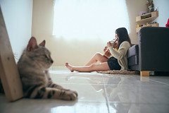 Girl & Cat (bdrc) Tags: malaysianphotographer sony sonyalpha sonyimages sonyuniverse asdgraphy mirrorless alphauniversemy alphauniverse sonyalphamy sonyalphauniverse sonymalaysia a7m3 a7iii fullframe malaysia teddy pei home house cat animal casual candid pentex asahi smc takumar 28mm f35 manual legacy prime